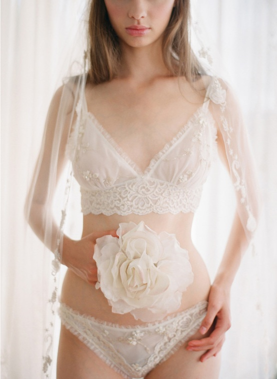 Claire Pettibone Bridal Lingerie on Lingerie Briefs