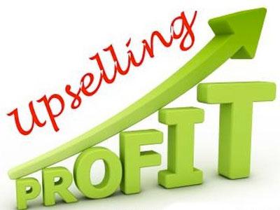 Upselling-Profit