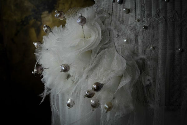 sparklewren