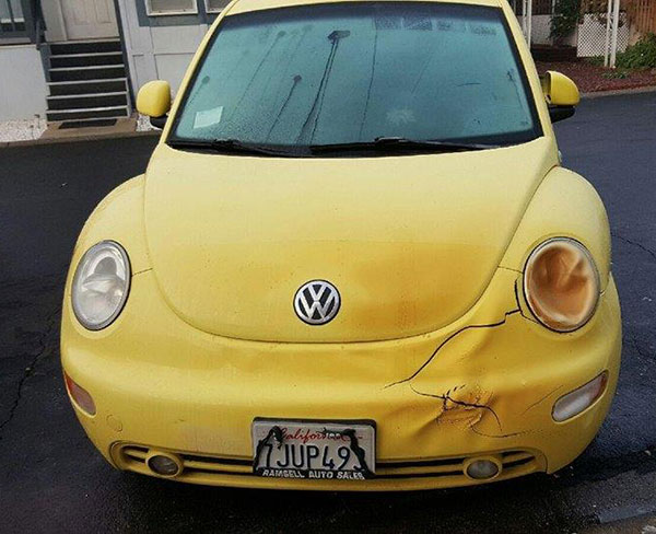 EMILY-CAR