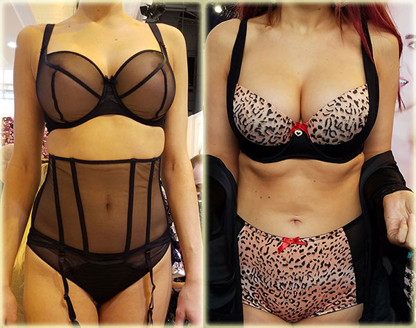 Aubade and Rougette by Tutti Rouge on Lingerie Briefs
