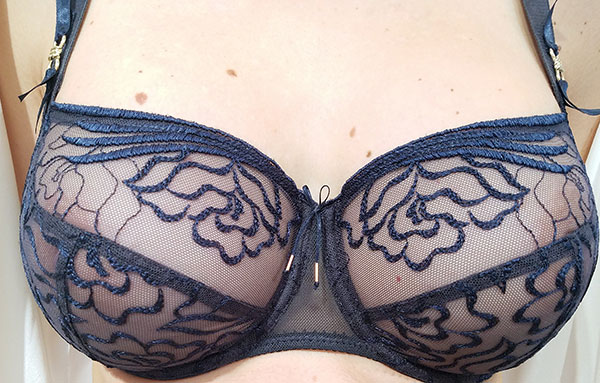 Empreinte Lingerie on Lingerie Briefs