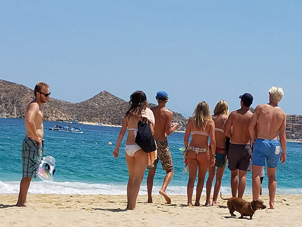 Beach Life in Cabo on Lingerie Briefs