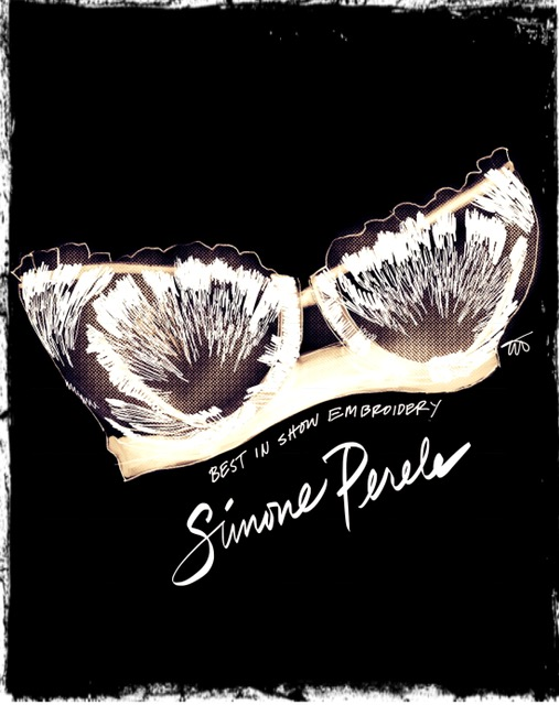 Simone Perele illustrated by Tina Wilson on Lingerie Briefs from Curvexpo