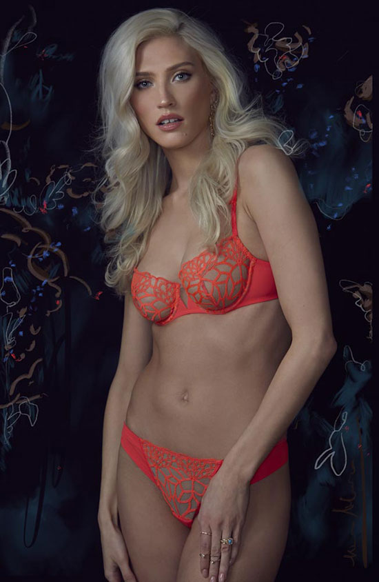 Stephanie Hynes Photography Fashion Lingerie on Lingerie Briefs: Simone Perele