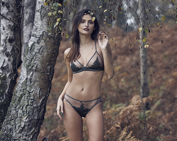 Fleur of England Wilderness collection on Lingerie Briefs