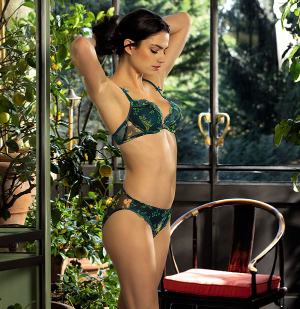 Lise Charmel Ecrin Nature on Lingerie Briefs