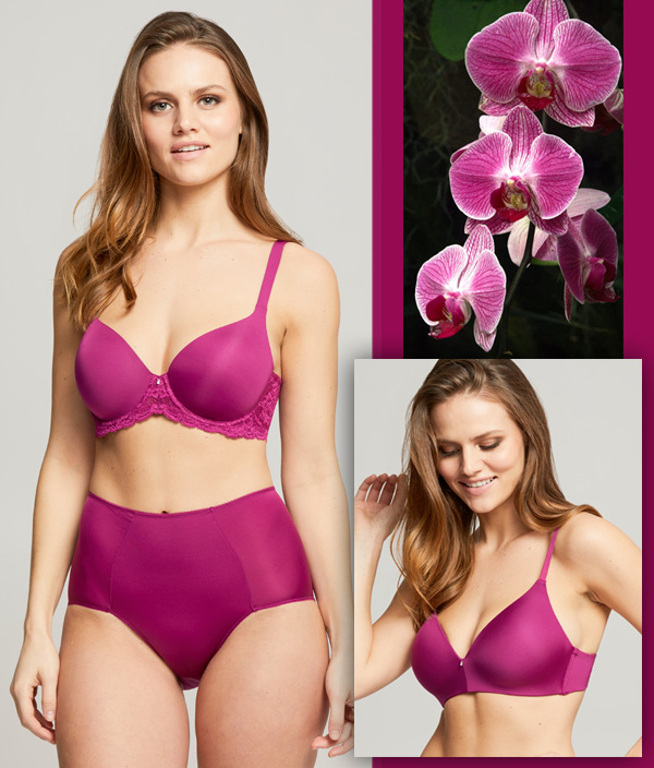 Montelle Intimates Pure Plus Full Coverage Bra and Wire Free T-Shirt Bra in wild orchid featured on Lingerie Briefs