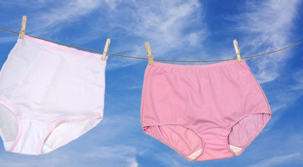 Shadowline best selling Panty briefs (granny panties) as featured on Lingerie Briefs