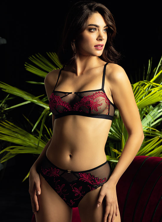 What Women Want Now ~ Lise Charmel Very Sexy Collection