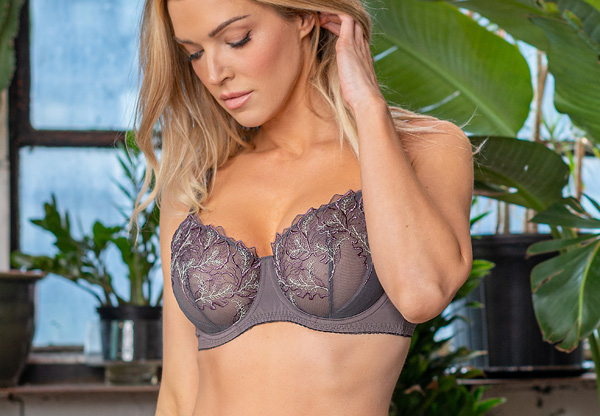 Fit Fully Yours new Bridget Collection joins the Fit Fully Yours in Mauve Plum - featured on Lingerie Briefs