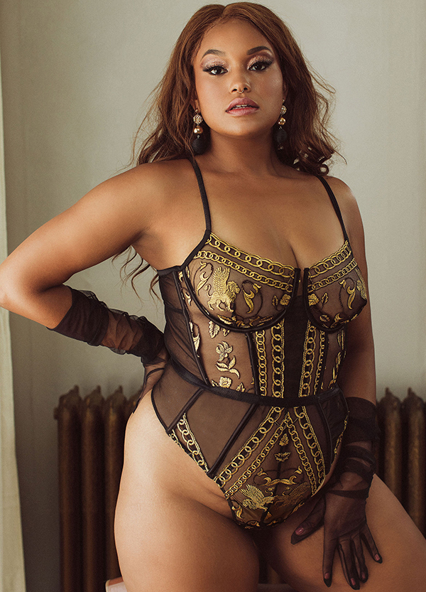 Kilo Brava Lioness collection with embroidered tulle with griffin motif as featured on Lingerie Briefs