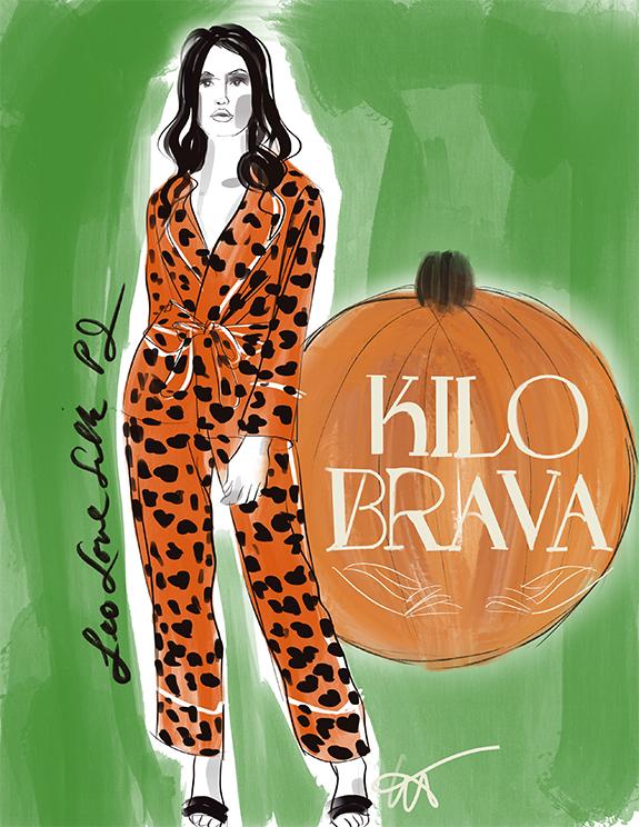 Kilo Brava Fall 21 illustrated for Lingerie Briefs